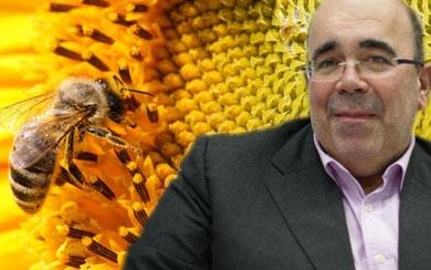Oria impulsa ayudas para sostener y mejorar la miel cántabra