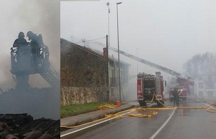 Mueren veinte animales en un incendio, al derrumbarse sobre ellos el tejado de la cuadra