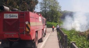 Conatos de incendios Sniace-Dualez que se suceden todos los años sin que la empresa Sniace ponga los medios
