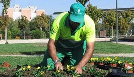 Treinta empleados del programa de Corporaciones Locales se incorporan a sus puestos de trabajo