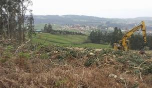 Convocadas las ayudas a la recogida de biomasa residual por un importe de 775.000 euros