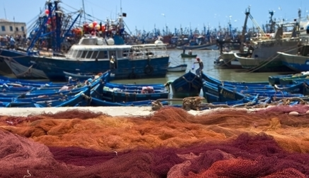 Concedidos 2 millones de euros en ayudas a 20 industrias pesqueras