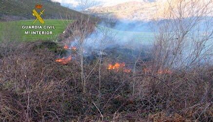 Sorprenden a un hombre prendiendo fuego en el monte Saja de El Tojo