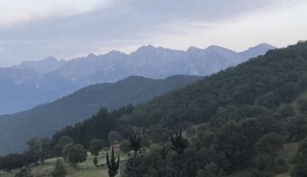 La superficie de bosques sostenibles crece un 4,5 por ciento en Cantabria