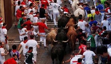 El Gobierno pretende suprimir el sacrificio de las reses tras los festejos taurinos