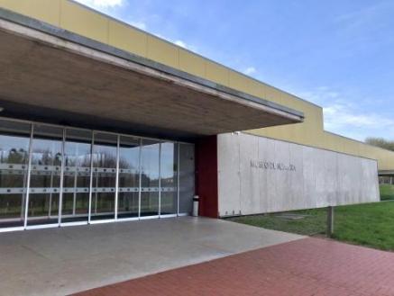 Cien mil personas visitaron en 2020 el Museo Nacional de Altamira