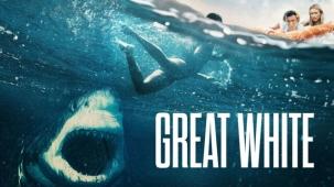 """""""Tiburón blanco"""", película de terror que prolifera"""